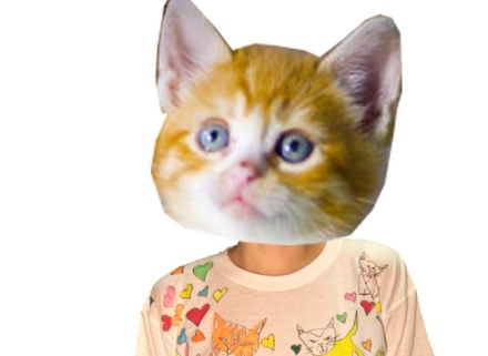 Cats_banner[1]