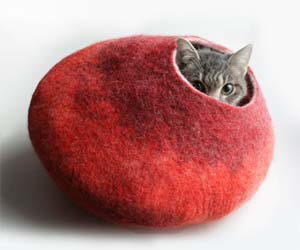 fuzzy-bubble-cat-bed